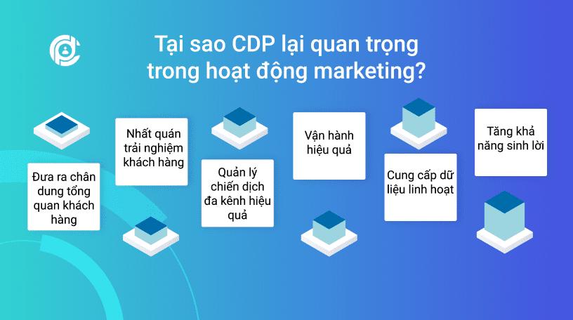 tai-sao-cdp-quan-trong-trong-marketing